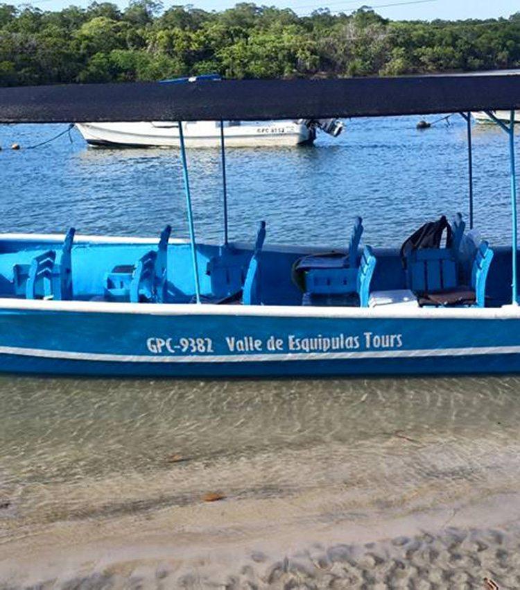 Estuary Boat Tour