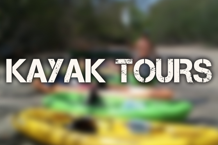 Kayak Button Over